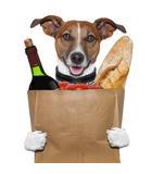 hond-op-vakantie-met-stokbrood-en-wijn-2